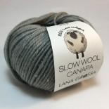 Lana Grossa Slow wool Canapa f0006 Ljusgrå