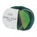 Lang Jawoll Magic Degradé f0017 grön