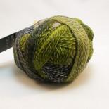Schoppel-wolle Crazy Zauberball f2204 grön/grå